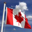 Canada flag (with clipping path) - Stock Photo