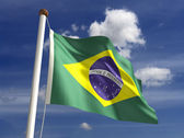 Brazilian flag (with clipping path) — Stock Photo