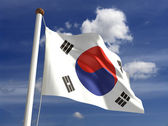 South Korea flag (with clipping path) — Stock Photo