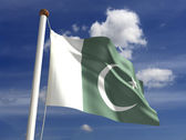 Pakistan flag (with clipping path) — Stock Photo