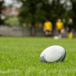 Stock Photo: Rugby ball