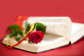 Red rose at book — Stock Photo
