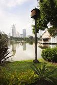 Parque Lumphini Bangkok — Stock Photo