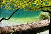 Pasarela de Plitvice — Stock Photo
