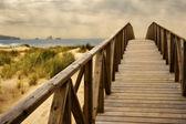 Las dunas de Liencres — Stock Photo