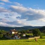 Beautiful bulgarian farmhouse — Stock Photo