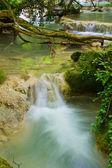 Krushuna cascadas 9 — Foto de Stock