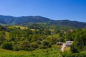 Koprivshtitsa verde valle — Foto Stock