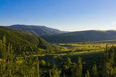 Koprivshtitsa green valley — Stock Photo