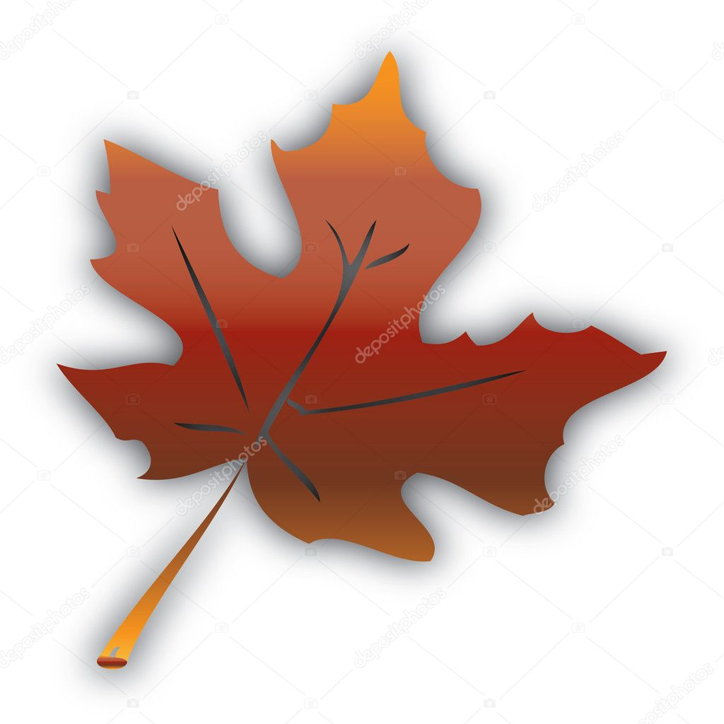 Abstract autumn leaf isolated on white — Stock Vector #11759645