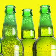 Row of beer bottles — Stockfoto