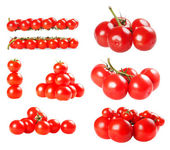 Tomatoes collection isolated on a white background — Stock Photo
