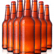 Row of beer Bottles with drops isolated — Stock Photo