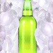 Bottle of beer is in ice — Stock Photo #12197397