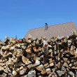 Home firewood — Stock Photo