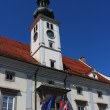 Maribor city hall — Stock Photo