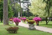 Ruta de los jardines del Vaticano — Foto de Stock