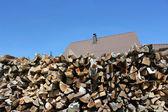 Home firewood — Stock Photo