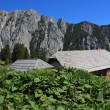 Alpine hut, Slovenia, Europe — Stock Photo