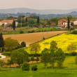 Tuscany panorama — Stock Photo #11130800