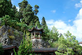 Chinese pagoda on a mountain slope — Stock Photo