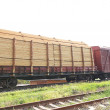 Freight Train with Wood cargo transportation - Stock Photo