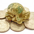 Money Coins with Turtle sitting Feng Shui — Stock Photo