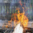 Stock Photo: Flame Fire illegal burning litter
