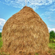 Haystack and blue sky village landscape — Stock Photo #11029637