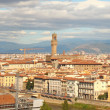 Florence City View — Stock Photo