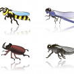 Постер, плакат: Insects