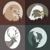Vector Animal cartoon — Vector de stock