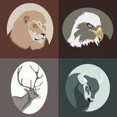 Zvířecí kreslené vektorové — Stock vektor