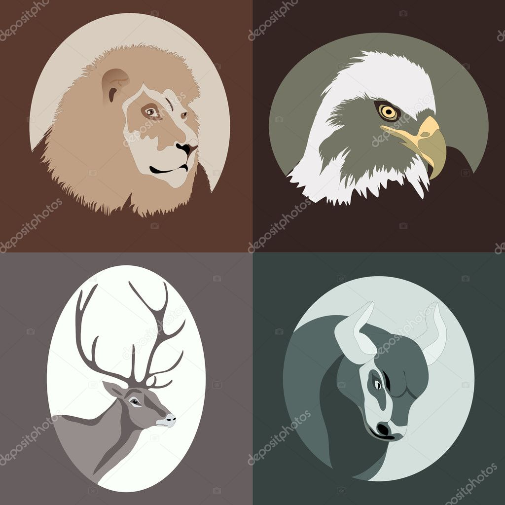 Vector Animal cartoon — Stock Vector #11996990