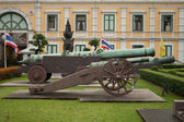 The old gun against the governmental building — Stock Photo