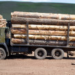 Stock Photo: Truck loaded with logs