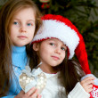Stock Photo: Two adorable girls in front of christmas tree