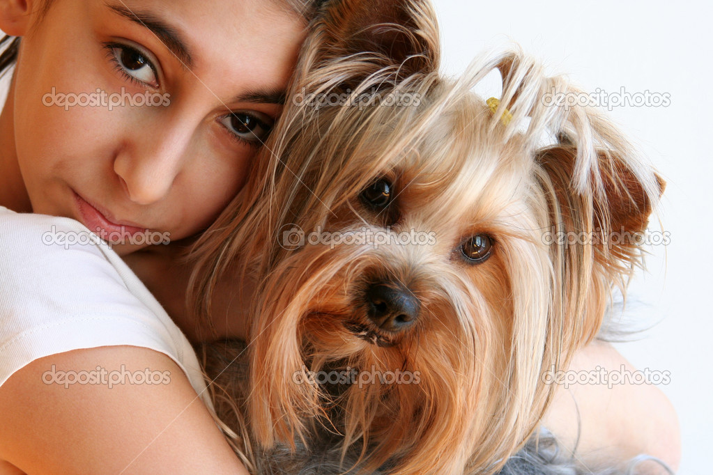 Girl with Yorkshire Terrier Portrait  Stock Photo #10964444