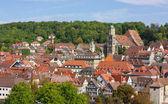 Panorama of Schwäbisch Hall,Baden-Württemberg,Germany — Stockfoto