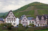 On the banks of the Mosel river,Germany — Stock Photo