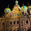 Church of the Savior on Spilled Blood — Stock Photo #11021585