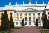 The estate at Peterhof — Stock Photo
