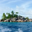 Rocks with palms in the ocean. — Stock Photo