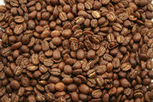 Kenyan Coffee Beans — Stock Photo