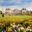 Luxembourg Palace with flowers — Stock Photo #10884550