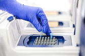 Scientist with DNA copying, Real-time cycler close — Stock Photo