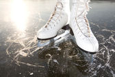 Wide skates on ice with sun reflected in behind — Stock Photo
