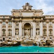 The Trevi Fountain in Rome, Italy with pigeon - Stock Photo