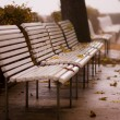 Stock Photo: Autumn Benches