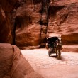 Carriage with horse in Siq - Petra - 图库照片